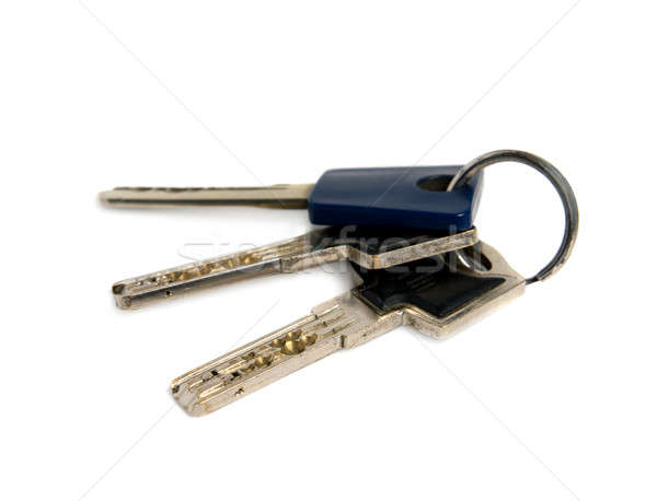 Bunch of keys. Isolated on white background. Stock photo © All32