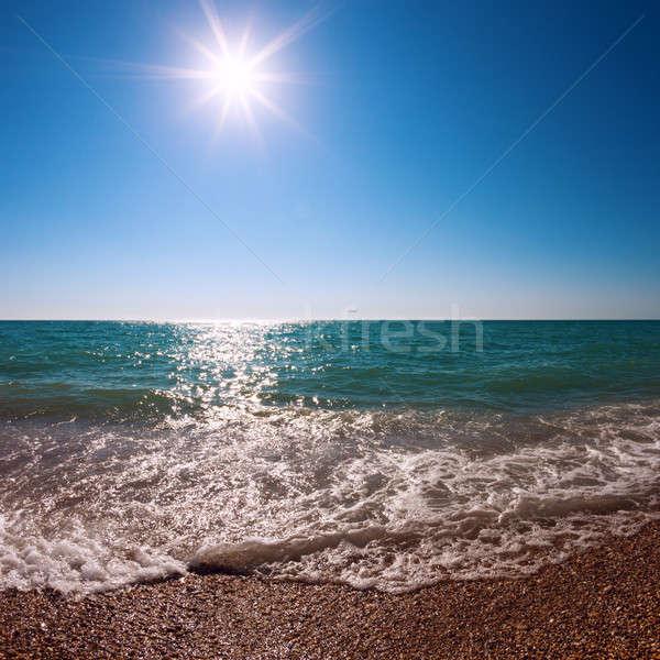 Seashore Stock photo © All32