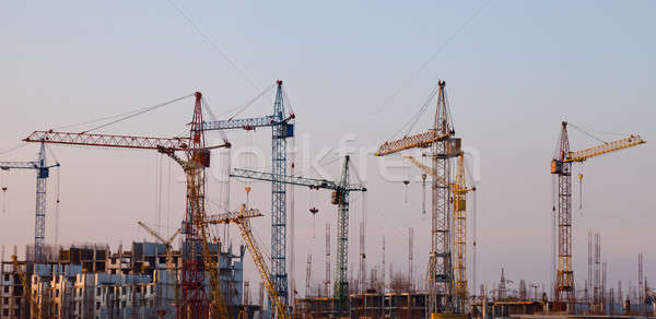 Construction cranes Stock photo © All32