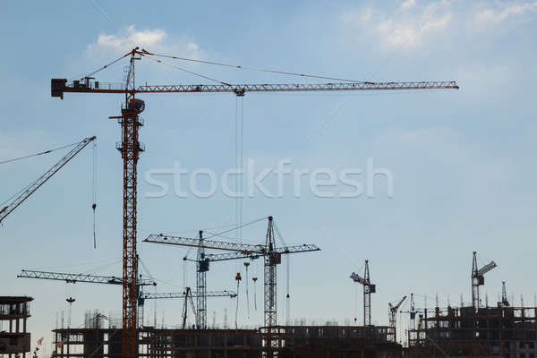 Construction cranes in the sky  Stock photo © All32