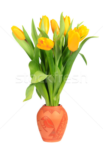 Yellow tulips in a clay pot Stock photo © All32