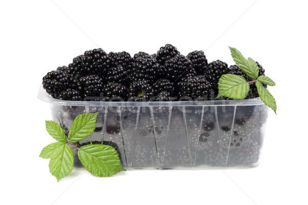 Blackberries with green leaves isolated on white Stock photo © All32