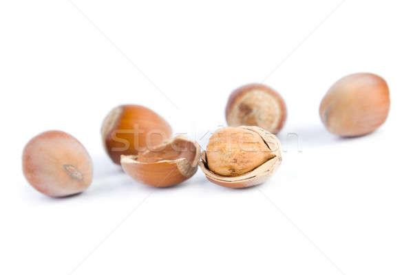 Mogyoró izolált fehér étel ősz kagyló Stock fotó © All32