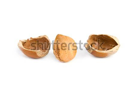 Hazelnut Stock photo © All32