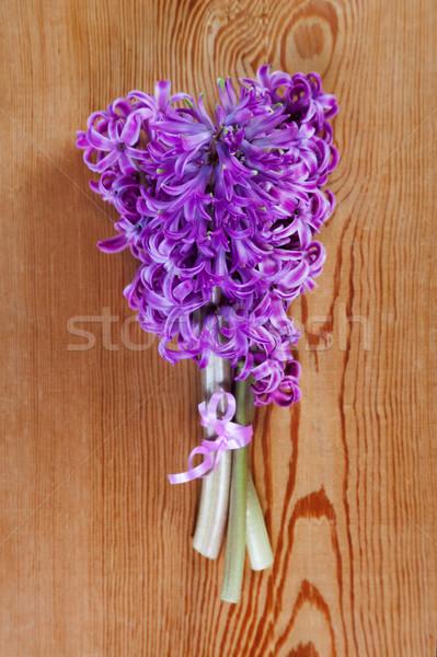 Buket çiçek güzellik renk sunmak pembe Stok fotoğraf © All32