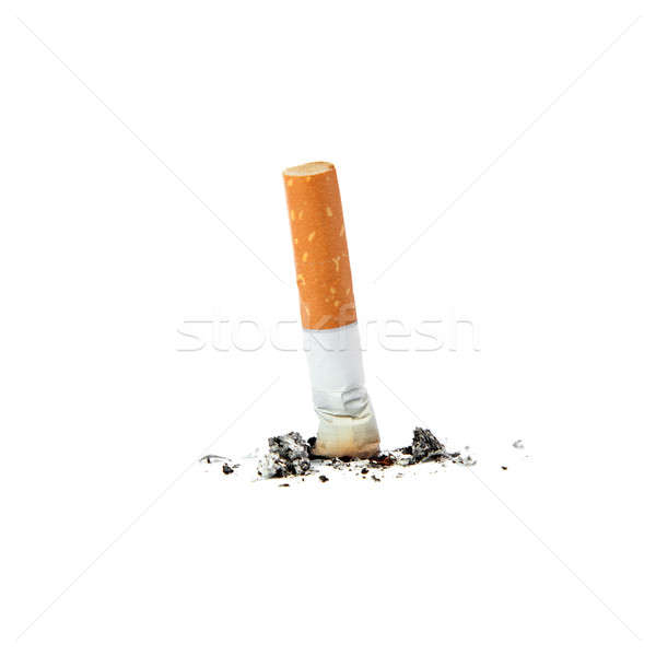 Extinguished cigarette. Stock photo © All32