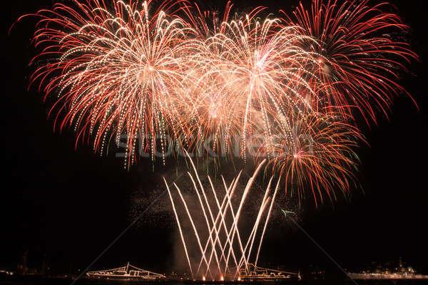 Vuurwerk nachtelijke hemel kleurrijk hemel kunst nacht Stockfoto © All32