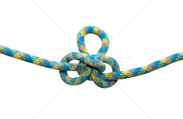 Sea knot. Austrian conductor. Stock photo © All32