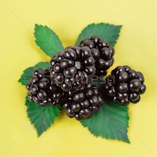 Blackberries with green leaves  Stock photo © All32