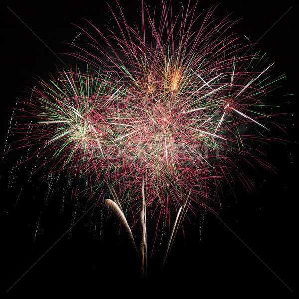 Firework in the night sky  Stock photo © All32
