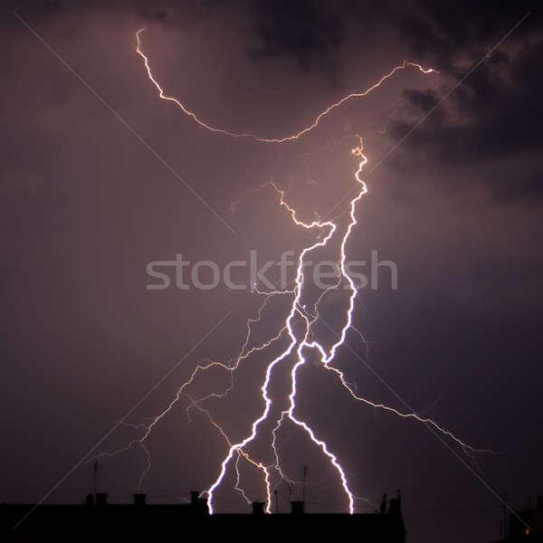 Branchy lightning Stock photo © All32