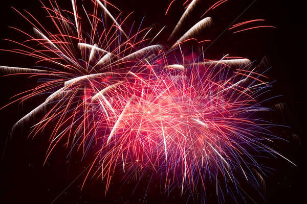 Fireworks in the night sky  Stock photo © All32