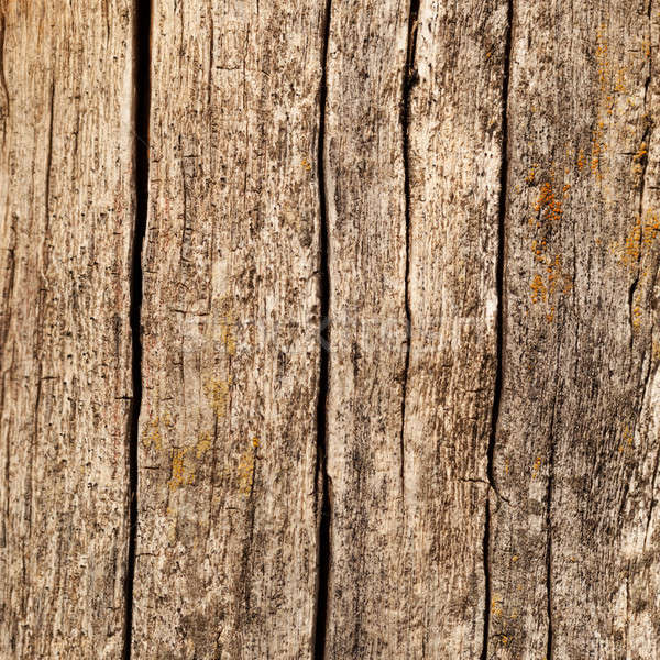 Wooden boards with cracks Stock photo © All32
