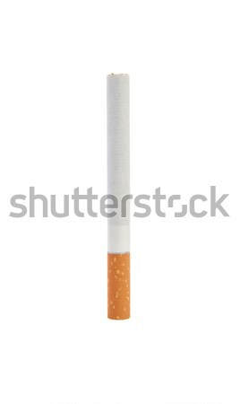 One cigarette Stock photo © All32