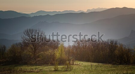 Berg dawn bos hemel zonsondergang landschap Stockfoto © All32