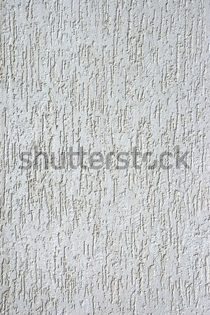 Decorativo gesso casca besouro lata usado Foto stock © All32