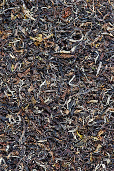 Indian black tea Stock photo © All32