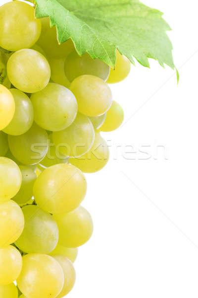 Witte druiven groene bladeren bos geïsoleerd voedsel Stockfoto © All32
