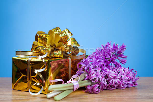Jácint virág ajándék doboz kék levél születésnap Stock fotó © All32