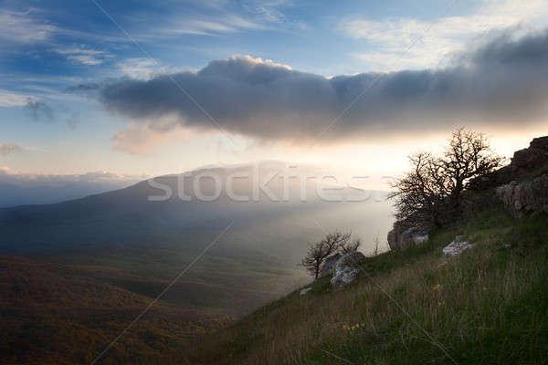 夜明け 山 雲 風景 空 ツリー ストックフォト © All32