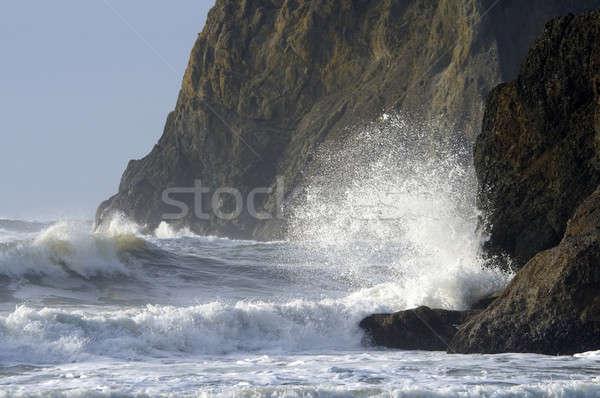 Crashing waves Stock photo © allihays