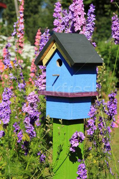 Painted Birdhouse Stock photo © allihays