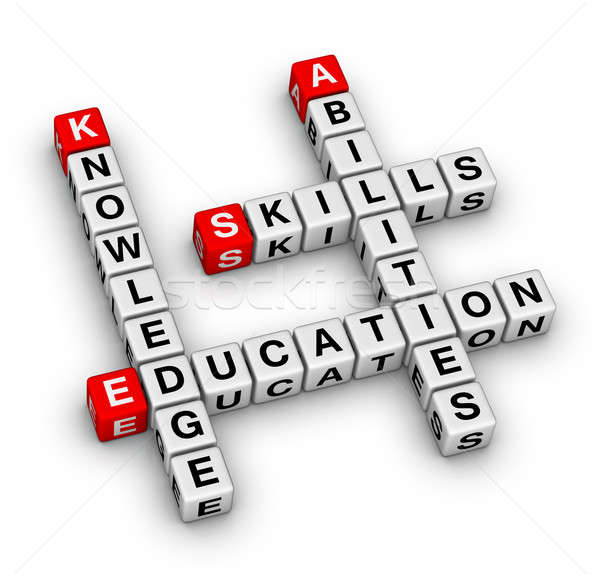 Image result for knowledge skills and abilities