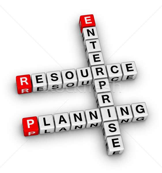 enterprise resource planning Stock photo © almagami
