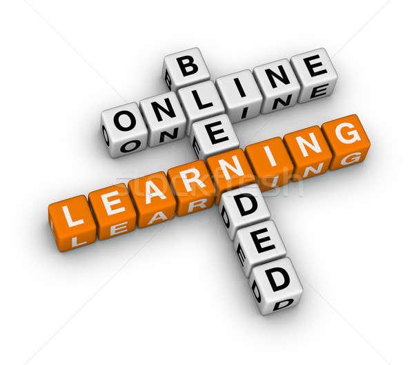 online blended learning Stock photo © almagami