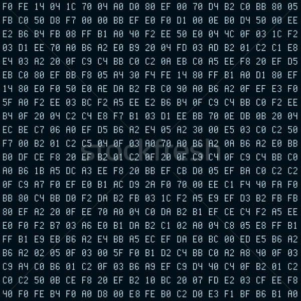 Internet sécurité logiciels code vecteur Photo stock © almagami