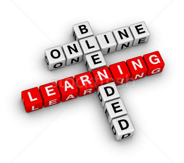 online blended learning Stock photo © almagami