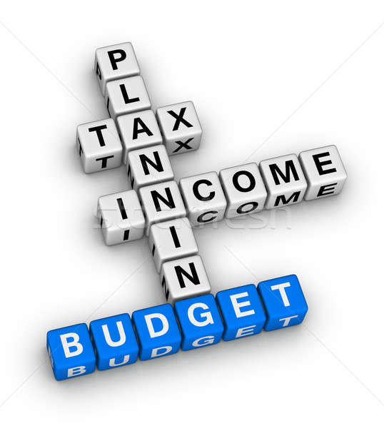 budget planning Stock photo © almagami