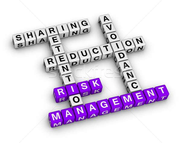 risk management Stock photo © almagami