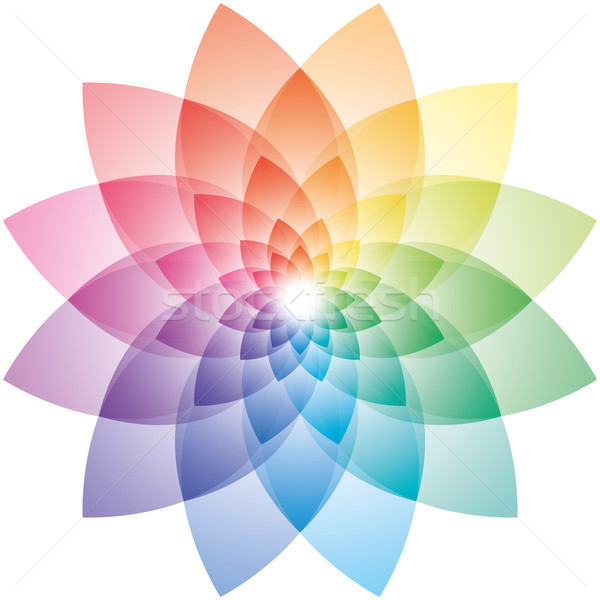 Lotus Flower Color Wheel Stock photo © almagami