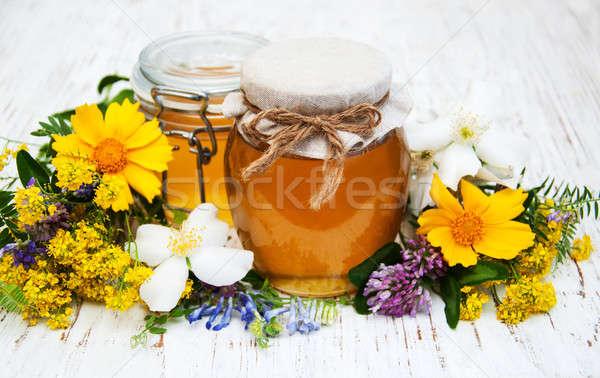 Méz vad virágok fából készült virág tavasz fa Stock fotó © almaje