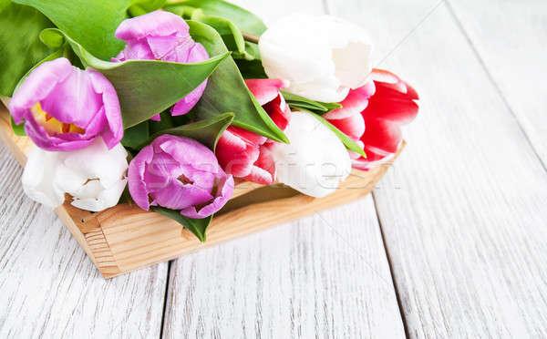 bouquet of tulips Stock photo © almaje