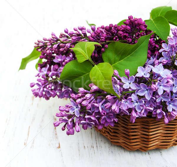 Stock fotó: Orgona · virágok · öreg · fából · készült · virág · fa