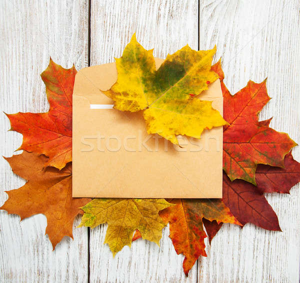 autumn leaves and envelop Stock photo © almaje