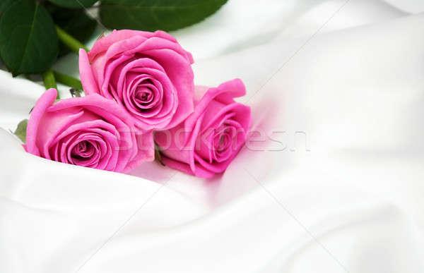 Güller beyaz ipek pembe çiçek çiçekler Stok fotoğraf © almaje