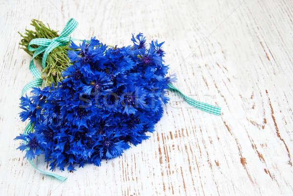 синий старые белый цветы лист Сток-фото © almaje