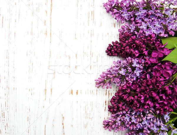 сирень цветы старые дерево природы Сток-фото © almaje