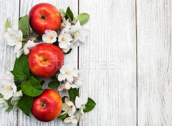 Almák almafa virágok fából készült étel levél Stock fotó © almaje