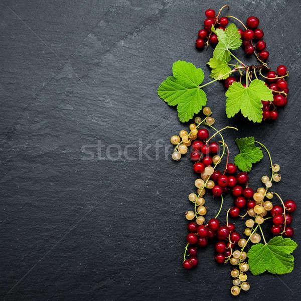Piros ribiszke levelek fekete levél gyümölcs Stock fotó © almaje
