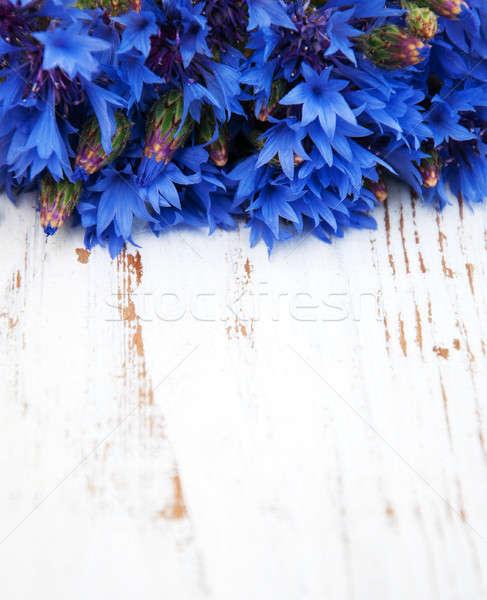 синий старые белый цветок природы Сток-фото © almaje