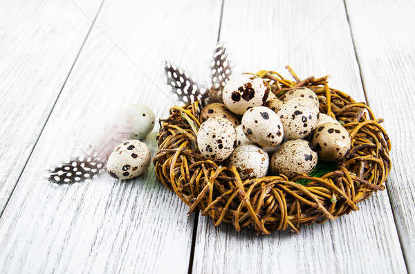quail eggs in nest Stock photo © almaje