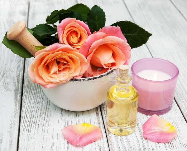 Estância termal rosa rosas velho rosa Foto stock © almaje