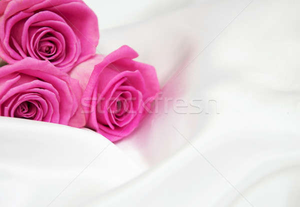 Rosas blanco seda rosa flor flores Foto stock © almaje