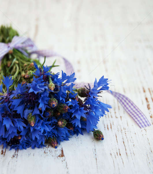 Stock photo: blue cornflowers