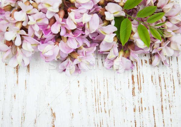Border with acacia flowers Stock photo © almaje