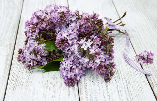 сирень цветы старые древесины природы Сток-фото © almaje
